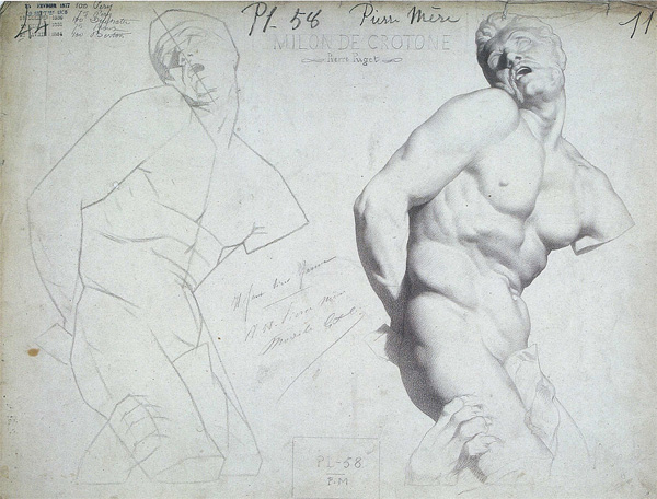 Bargue drawing of a torso