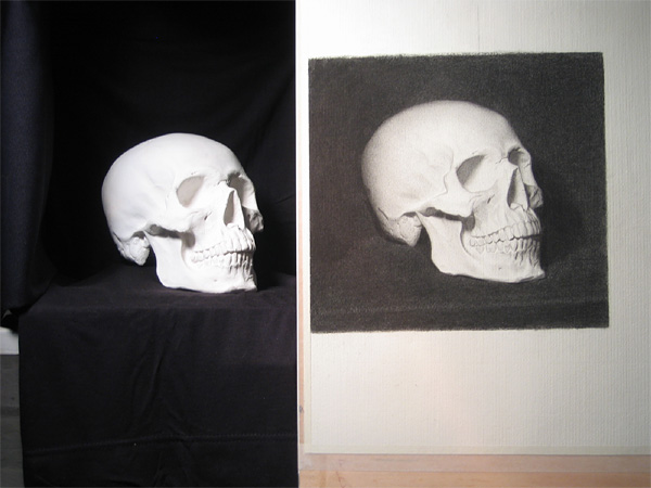 Cast drawing of a skull